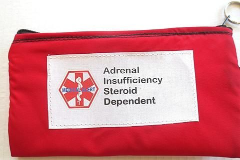 Toss in your bag zippered medical insulated case with medical alert label for diabetes or adrenal insufficiency color selection and options to selection from