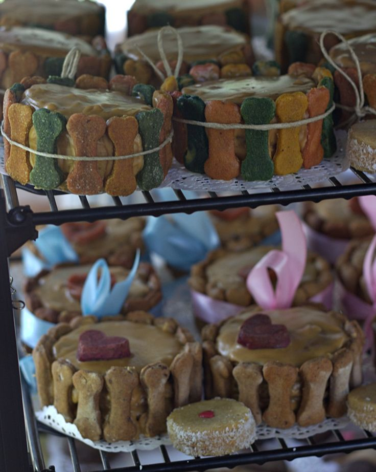 Amazing cakes for dogs by the Pomery bakery during the dog festival in August 26th