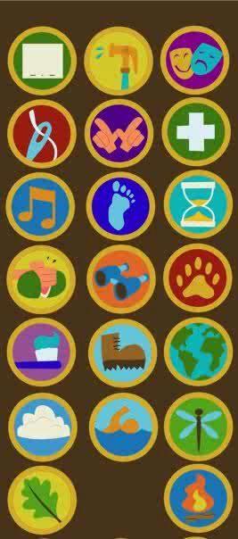 Wilderness explorer badges from Up