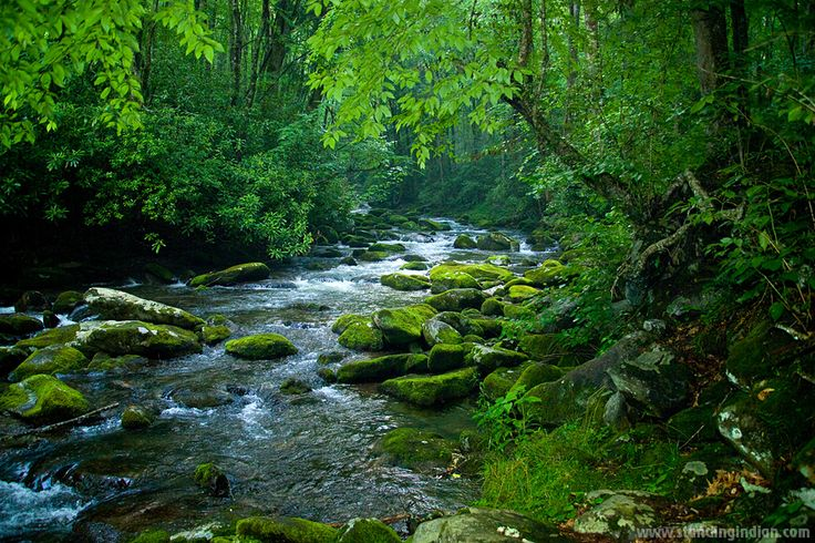 Google Image Result for http://www.standingindian.com/images/creek-in-Smoky_mountain.jpg