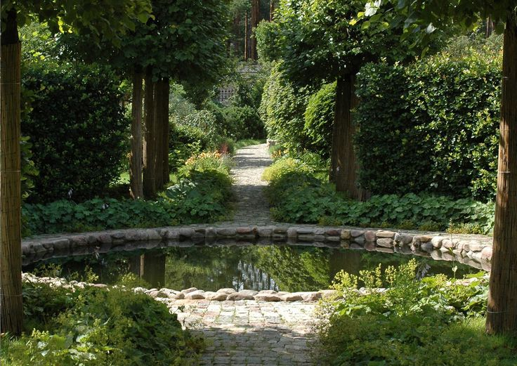 223 best images about water management on pinterest yard for Garden pond management
