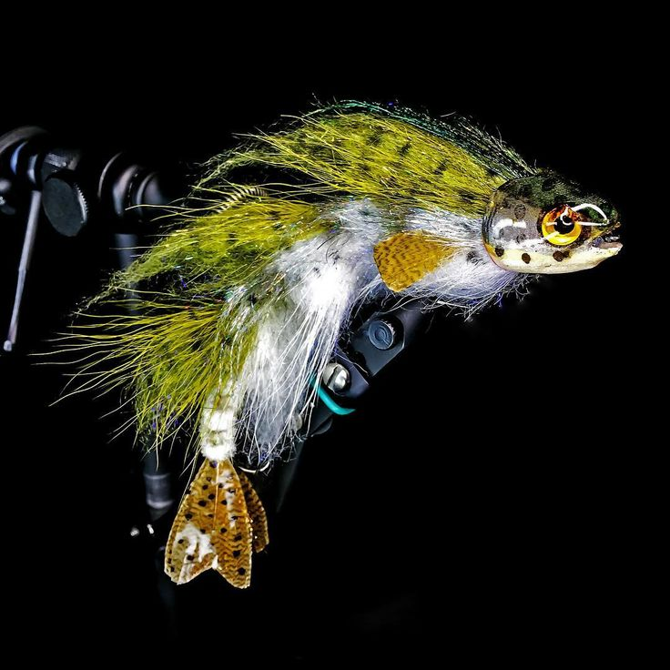 1320 best images about bass flies on pinterest fly shop for Fly fishing lures for bass