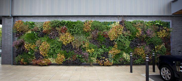 Duurzame plantenwand voor het cre ren van een groene omgeving garden afscheiding wanden - Creeren van een tuin allee ...