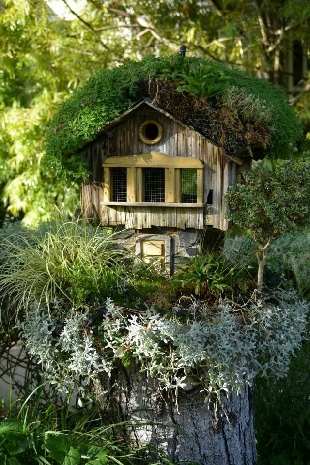 Cool birdhouse! Found in Picsart Photo Gallery
