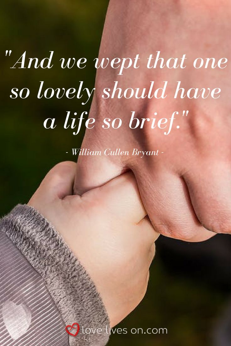 An emotional quote about child loss by William Cullen Bryant.