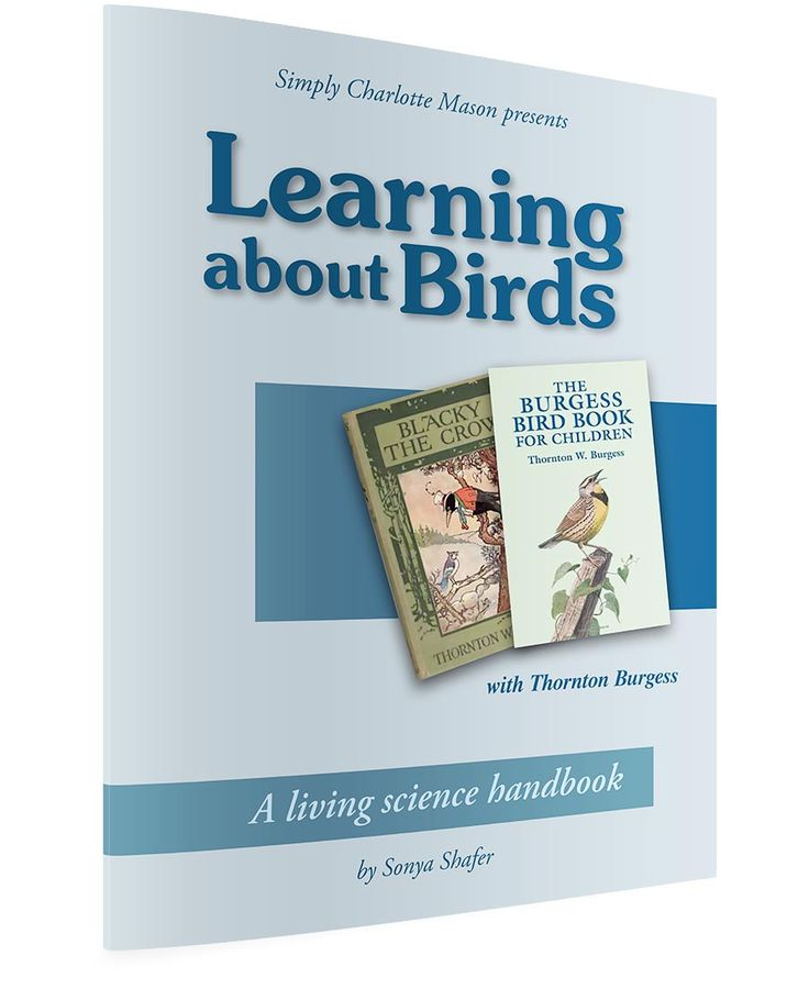 Learning About Birds With Thornton Burgess