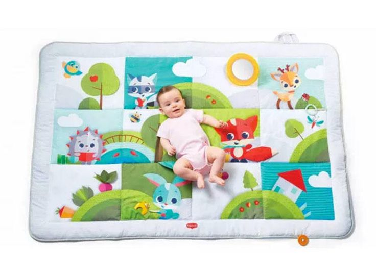 Best Baby Play Mats And Activity Gyms