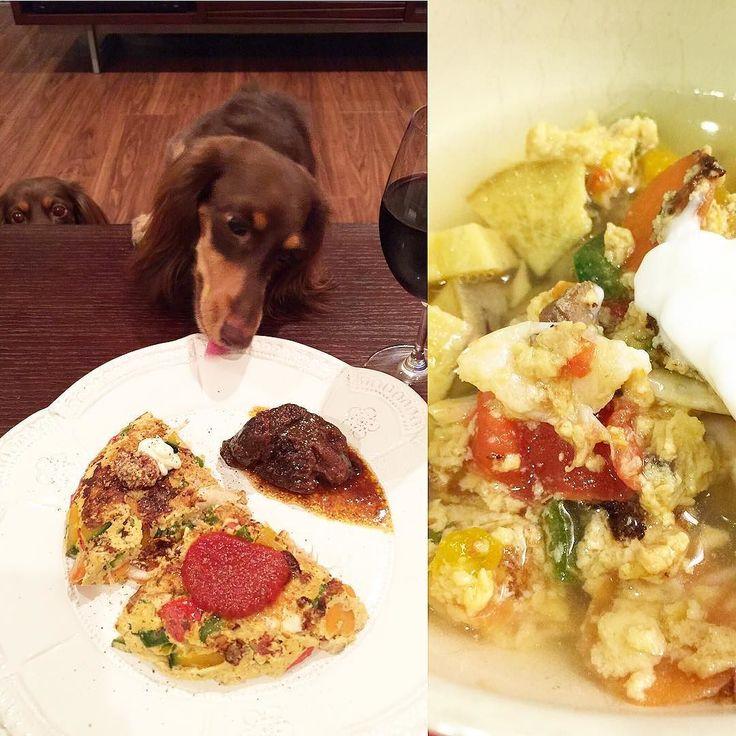 Spanish omelet ish for supper. . 今夜の一家ごはんは野菜たっぷりのオムレツに白エビとパルメザンチーズ入れてヨーグルトと焼き芋もトッピングおばばはそれに熊本トマトのケチャップ粒マスタード&マヨで頂きましたもちろんたっぷり作ったスネ肉のワイン煮を添えましたよ . #犬 #ダックス #ダックスフンド#短足部#多頭飼い #チョコタン #犬バカ部 #ワンコなしでは生きていけません会#おひとりさまワンコ部 #おひとりさまワンコごはん部#癒しわんこ#犬ごはん#dog#dachs#dachshund #dogsofinstagram #dachstagram #instadachshund #doxie #ふわもこ部