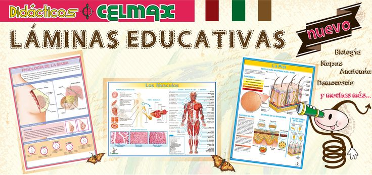 Láminas Educativas