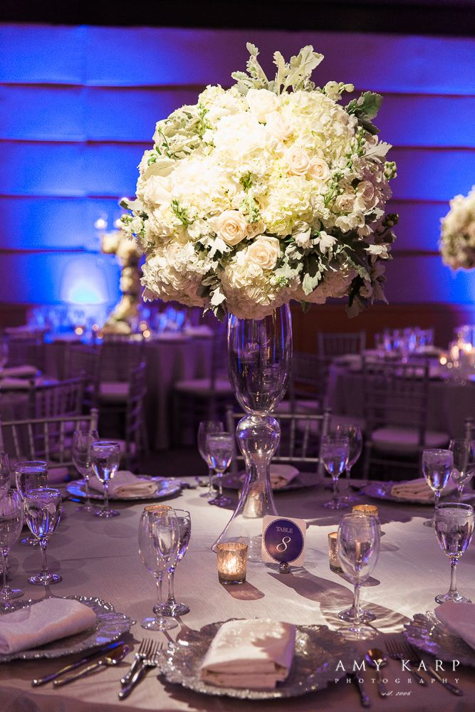24 best hilton park nicosia weddings images on pinterest bodas 38 blue silver white wedding winter wedding junglespirit Choice Image