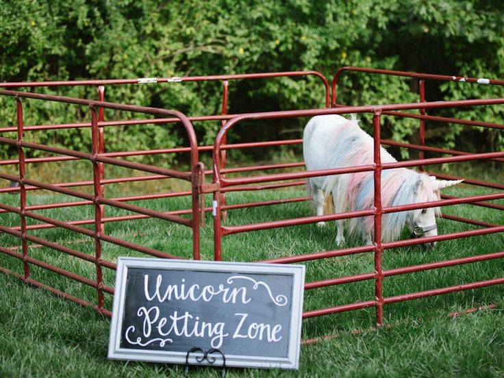 Nothing like the photo opportunity of a lifetime! This Virginia couple supplied the entertainment at their wedding with their version of a unicorn petting zoo.