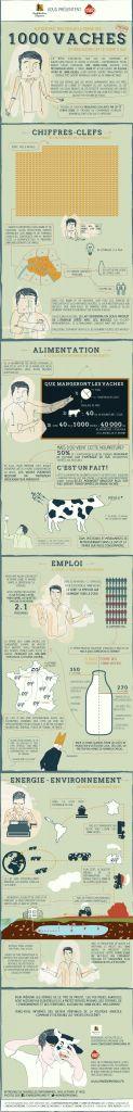 1000 vaches, méthanisation, ferme-usine, subventions publiques …Grâce à une infographie pédagogique, nous vous proposons d'y voir plus clair dans ce projet de ferme-usine et de tout comprendre à l'usine à gaz des 1000 vaches.