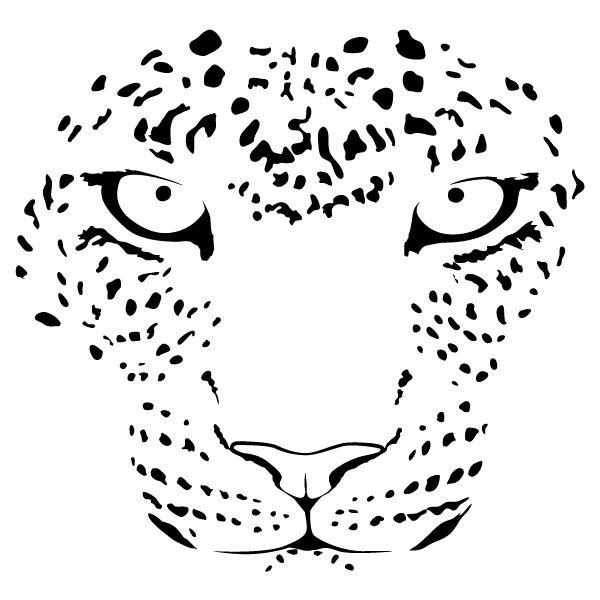 Mejores 17 imágenes de leopardos en Pinterest   Leopardos ...