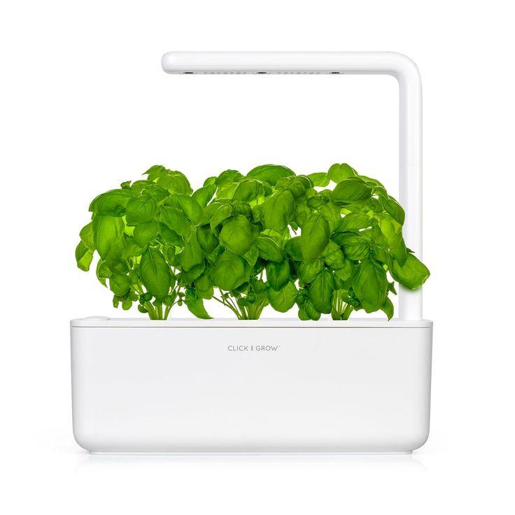 Shop Click Grow Countertop Gardens Huckberry Smart 400 x 300