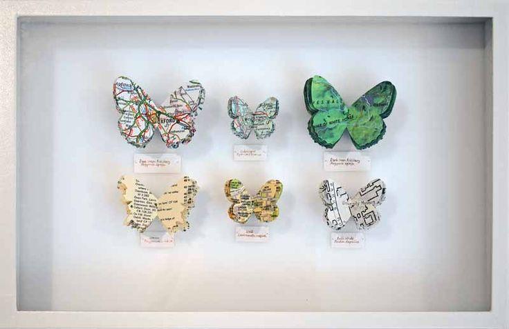 Junction Art Gallery - Tracey Bush 'Oxford Butterflies'