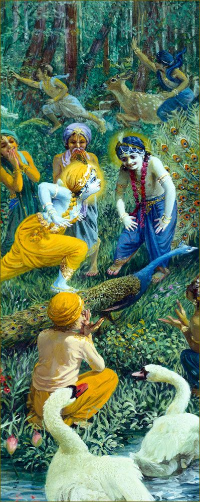 In some places both Kṛṣṇa and Balarāma were accompanied by Their friends. The boys were singing, imitating the humming sound of the drones and accompanying Kṛṣṇa and Balarāma, who were garlanded with forest flowers. While walking, the boys sometimes imitated the quacking sound of the swans in the lakes, or when they saw the peacocks dancing, they imitated them before Kṛṣṇa. Kṛṣṇa also moved His neck, imitating the dancing and making His friends laugh.