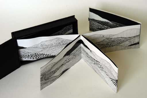 Fecundfields by Alex Sutherland. 9 x 18 x 3 cm. Card, paper, ink drawings. Small box with concertina book