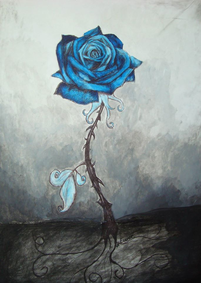 The Rose - Ink on Paper Ellenor Hastie