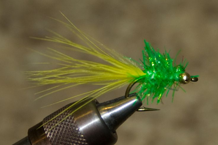 Michigan salmon flies all things fishing pinterest for Salon fly