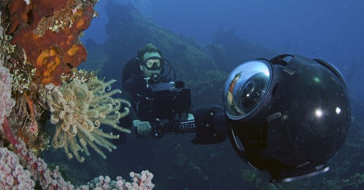 Google launched Street View in Indonesia, allowing users to see panoramic cityscapes and underwater views of the country's striking coral reefs.