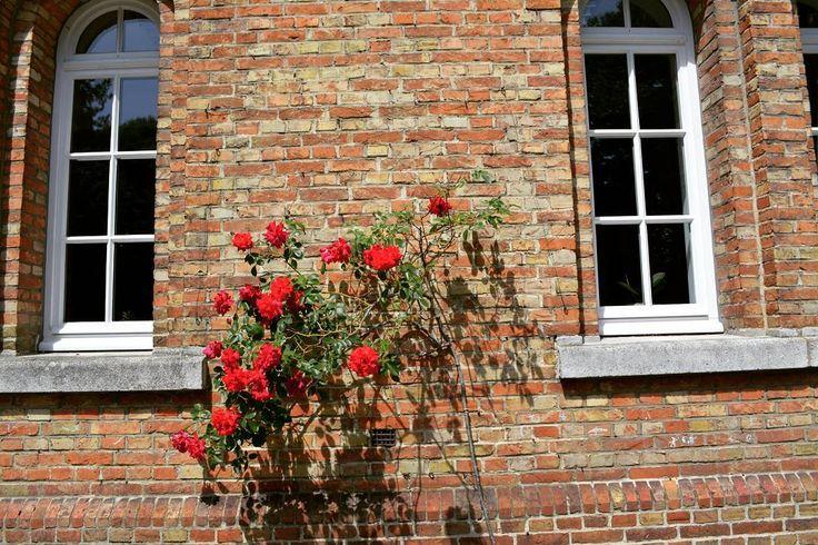 . ��������❤. Brugge. Брюгге. 25 mei 2017.  Een fijne dag aan allemaal. Всем прекрасного дня.  #europe #België #Belgium #Бельгия #travel #tourism #tourismbruges #visitbrugge #bestinbruges #bestofbruges #Brugge #Bruges #Брюгге #stad #city #bestplace #фотодня #путешествие#brugesbelgium http://tipsrazzi.com/ipost/1522329828883538225/?code=BUgZunplaEx