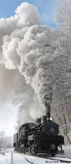 Cass Scenic Railroad, WV!! 21+ years living in WV and I've never done this - I REALLY want to!