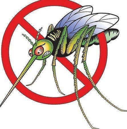 Как избежать укусов комаров?