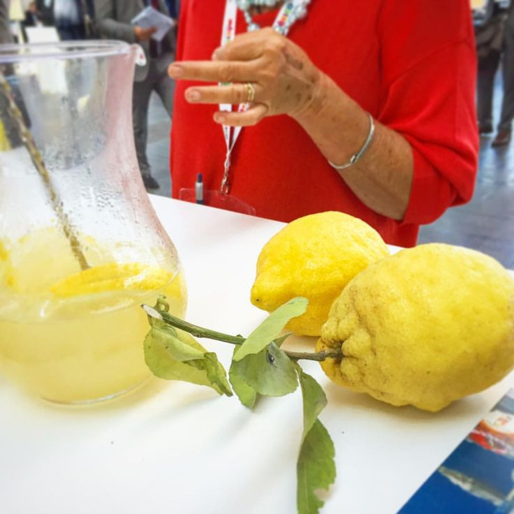 Lemon Mind — Our #Amalfi #Lemon#Spritz in #ttgrimini  ☀️...
