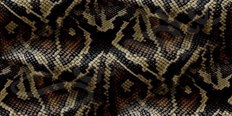 Slangen huid