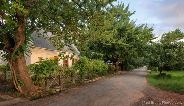 An evening sun sets on a property in Vigne Lane Greyton, taken by Paul Bruins
