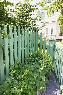 Love this color fence...