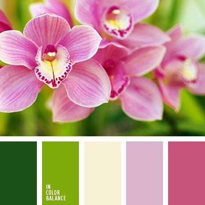 amarillo y verde, blanco lechoso, color amarillo pálido, color de las orquídeas, colores contrastantes para una boda, lila y verde lechuga, matices de colores para boda, paleta de colores para boda, rosado vivo, rosado y verde, tonos lilas, tonos rosados, tonos verdes, verde lechuga