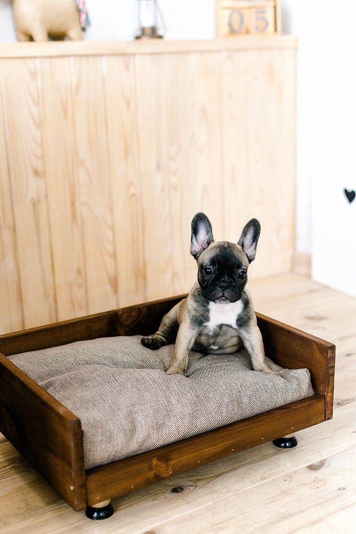 Superior Furniture For Pets. Sofa For Dogs. 50х40 см. 2500 рублей. Диванчик для