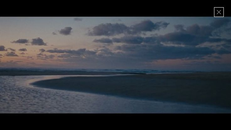 Tales of the Wild: Solace by Harrison Roach for Dior