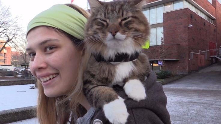 Mai Helen Raaen trener opp katter til å hjelpe mot sosial angst