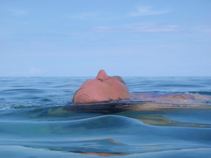 floating in ocean