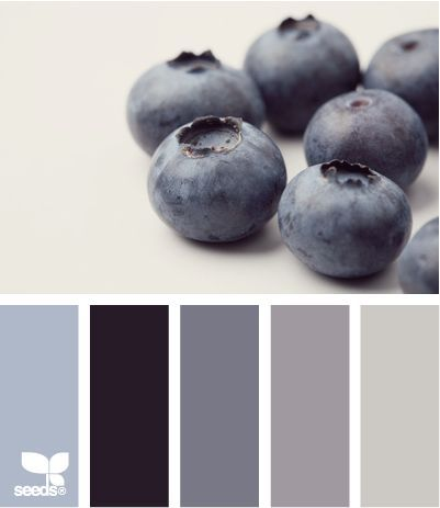 blueberry tones - design seeds