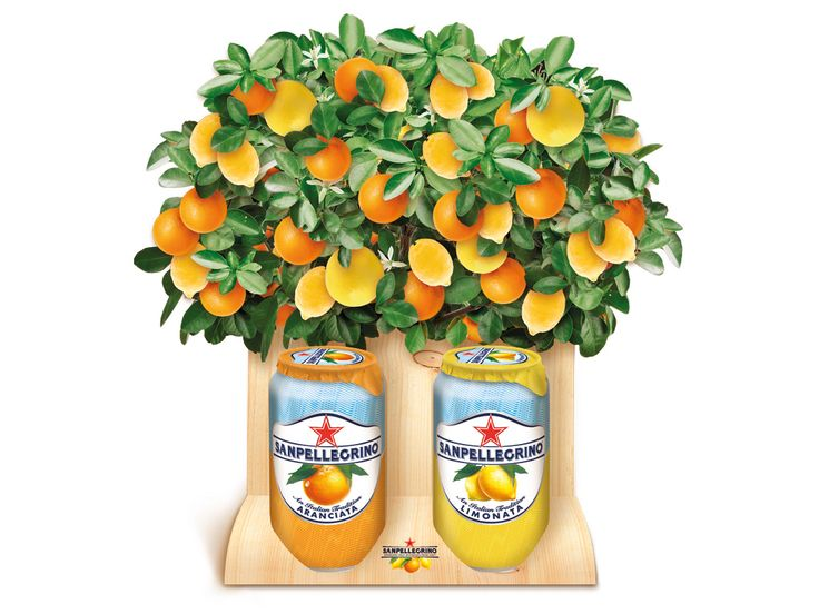 San Pellegrino - Sparkling Fruit Beverages - POS
