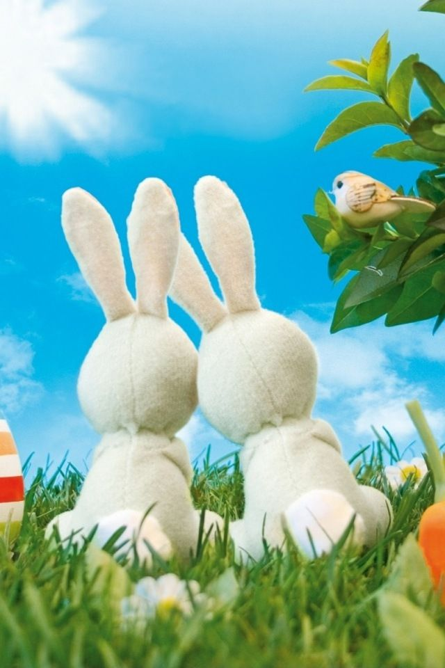 Free Download Easter Bunnies iPhone HD Wallpaper for your iPhone 4, iPhone 4s in 640x960 pixels high definition resolution and iPhone 3G, iPhone 3Gs in 320x480 pixels.