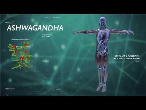 NuCerity Elite: Supports Antioxidants • Anti-Aging • Immune System - YouTube