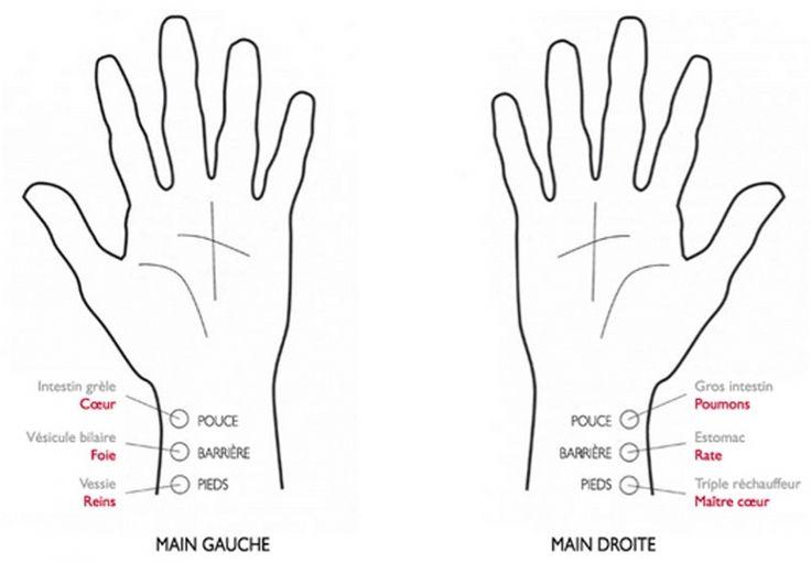 Image des points de diagnostic des pouls en médecine chinoise (source: blog4ever)