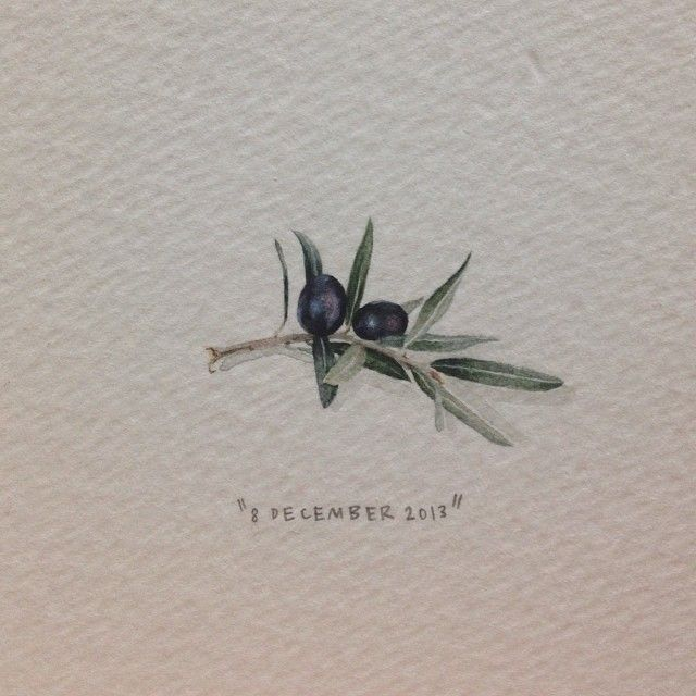 Day 342 : Olive branch. 29 x 29 mm. #365paintingsforants #miniature #watercolor #olivebranch #olive #art (at Vredehoek)