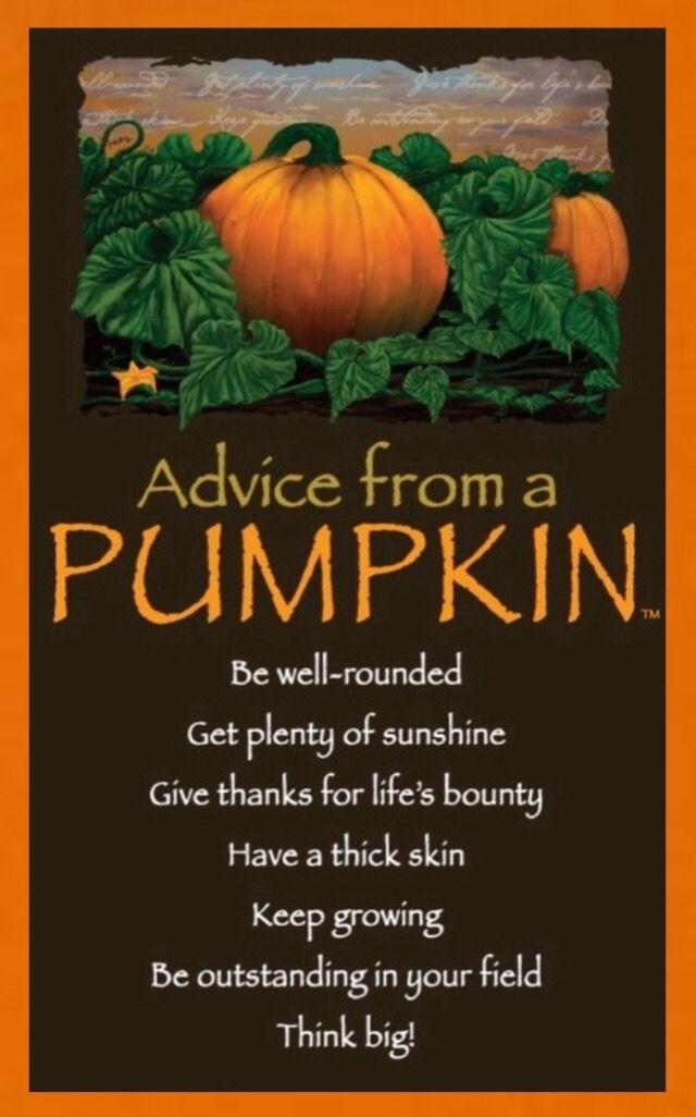 pumpkin quote