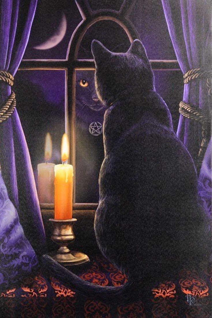 Midnight Vigil, die Nachtwache, hat ihren Posten bezogen! Mondenschein, eine flackernde Kerze, das glänzende #Pentagramm und eine schwarze #Katze machen die mystische Szene, die Lisa Parker für diese große #Leinwand entwirft, perfekt. #fantasy
