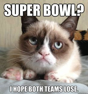 Grumpy Cat Super Bowl        All of image that appear on this page found from internet. The WebMaster does not hold any Legal Rights of Ownership on them. Ownership/Copyrights still vests with whomsoever concern. If by anyhow any of them is offensive to you, please Contact Us asking for the removal. If any images...