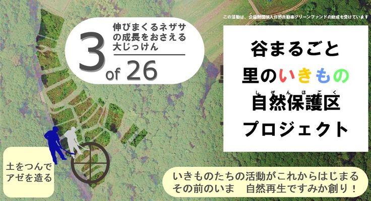 【自然再生活動(基盤整備)を実施します(奈良県奈良市大柳生地区)】 3回目となる今回は、ジャングルを作っていた植物の1つ、ササと戦います。そのために、スコップで固いササの根を掘って池を作り、ササが生えていたところに水をためて、ササの成長が遅くなるかどうかテストするための区画を造ります。  実施日時 2017.04.30(日) 13:30~15:30(受付:13:00~) 少雨決行・荒天中止(中止の場合は当日10:00までに奈良市青少年野外活動センターサイトにてお知らせします) 場所自然再生サイト(奈良県奈良市大柳生地区 サイトNo.3) 対象小学生~大人 お申込奈良市青少年野外活動センター センターサイト専用フォームにて・先着20名様 集合奈良市青少年野外活動センター(奈良市阪原町) 13:00~ 参加費500円/人(ワンドリンク・資料代含む) 服装等長靴、作業用手袋、汚れても良い服装、帽子、(お持ちの方は)スコップをご用意ください  主催一般社団法人 自然再生と自然保護区のための基金(企画・運営) NPO法人 奈良地域の学び推進機構(運営支援)