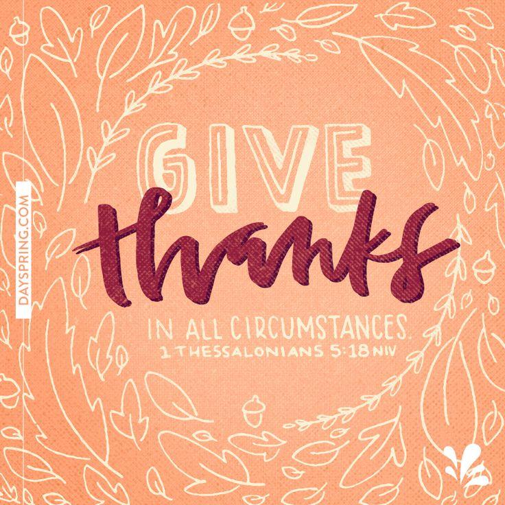Thanksgiving Ecards | DaySpring