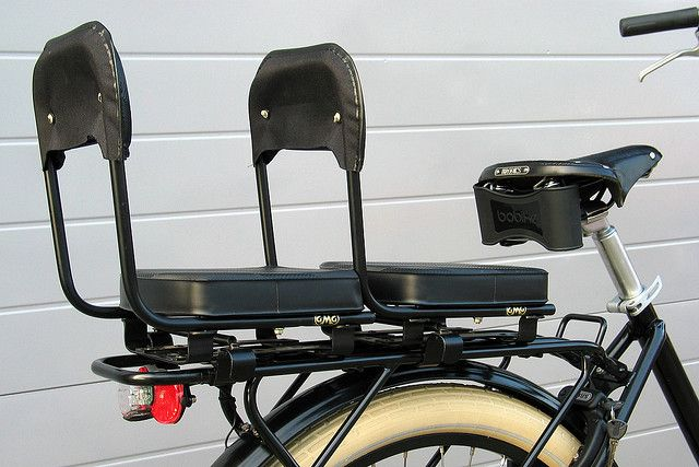 Workcycles FR8 Family bike that can hold 2 kids in back.