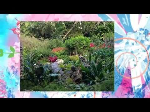 The magnificent Andromeda Gardens in #Barbados!