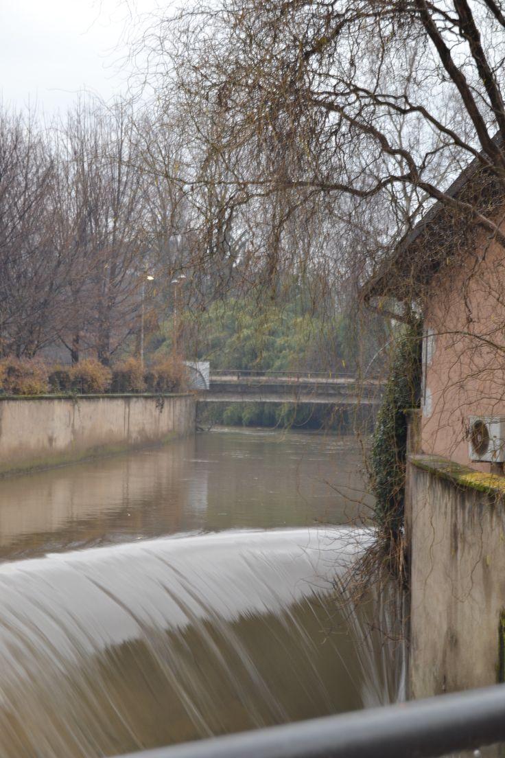 Olona Legnano